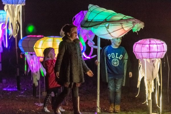 Children looking at illuminated sea life sculptures at Corby Mardi Gras 2018